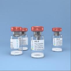 rhIL-6, интерлейкин 6 человека, рекомбинантный белок